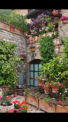 Garden courtyard in Assisi Balcony Garden, Garden Pots, Outside Living, Outdoor Living, Backyard Creations, Spanish Style Homes, Home Landscaping, Garden Structures, Fairy Houses