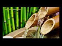 10 horas de Relaxamento SOM de FONTE de BAMBU - Yoga, Estudo e Foco | Re...