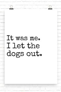 It was me. I let the dogs out.