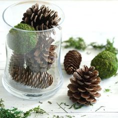 9 Pack Natural Pine Cones and Moss Balls Assorted Potpourri Vase Fillers Bowl DIY Table Decorations Woodsy Baby Showers, Forest Baby Showers, Woodlands Baby Shower Theme, Unique Wedding Centerpieces, Moss Centerpiece Wedding, Moss Wedding Decor, Wedding Vases, Rustic Wedding, Baby Shower Table