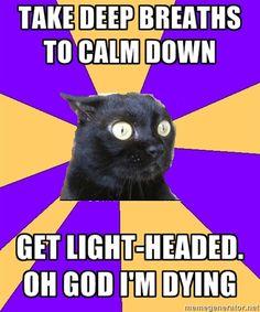 Anxiety Cat meme