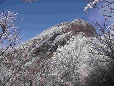Mt.Sobo