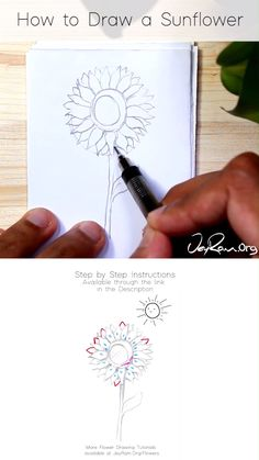 Flower Drawing Discover How to Draw a Sunflower : Step by Step for Beginners Pencil Art Drawings, Art Drawings Sketches, Easy Drawings, Sunflower Sketches, Sunflower Drawing, Sunflower Art, Flower Drawing Tutorials, Art Tutorials, Drawing Flowers