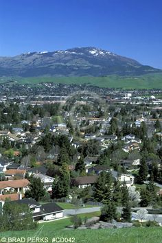 San Ramon, CA - Mom returned to live here when I was a teenager.  I love the bay area.