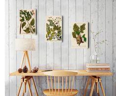 Set de 3 impresiones sobre madera Botanic, multicolor - 20x32 cm