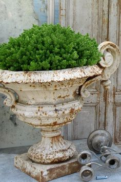 Cast iron urns turn rusty and shabby and yet look so classy! [via Atelier de Campagne] Container Plants, Container Gardening, Urn Planters, Topiary Plants, Potted Plants, Garden Urns, Herb Garden, Deco Floral, Garden Ornaments