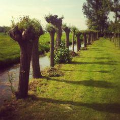 De tuin van De Koperen Knop, Hardinxveld-Giessendam
