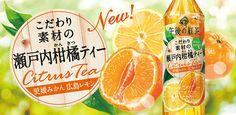 こだわり素材の瀬戸内柑橘ティー