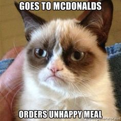 Grumpy Cat Goes to McDonalds