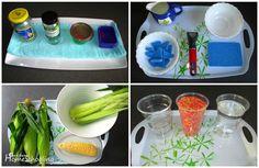 Montessori Inspired Kitchen Activities - Get Into Homeschooling