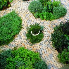 Brick paths help define this kitchen garden designed in the style of a classic potager. Crops grow in small rectangular, square, and circular beds separated by walkways.    The little plots and generous paths make weeding, watering, harvesting, and other chores accessible. And the geometric patterns add order.