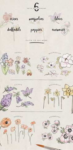 Summer Bundle - by DesignsByMissM on Creative Market. Love the look of these watercolor flowers! These would look positively lovely on wedding invitations.