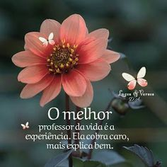 Nill de tudo um pouco: Frases maravilhosas Gods Love Quotes, L Quotes, Spiritual Messages, Special Words, Motivational Phrases, Life Goes On, Beautiful Words, Believe In You, I Card