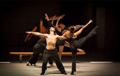 11, 12 e 13/08 ♥ Espetáculo SALA DE ENSAIO no Teatro Sérgio Cardoso ♥ SP ♥  http://paulabarrozo.blogspot.com.br/2016/08/11-12-e-1308-espetaculo-sala-de-ensaio.html