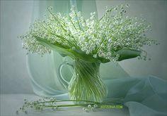 Znalezione obrazy dla zapytania gify kwiaty konwalie