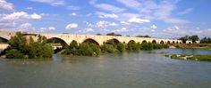 Pont médiéval sur le Rhône • Pont-Saint-Esprit • Vis iT DifferenT