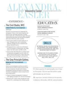 Resume Writers Nyc Experimental Infographic3D Resume  Infographic  Pinterest .