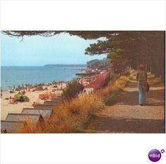 avon beach clift walk