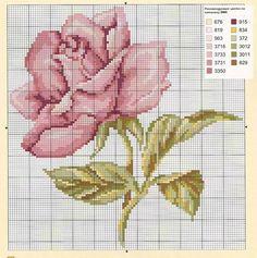 .-de-X-roses/d'altres-flors...  --ae2f801b5f65bfe059bb355738159509.jpg (736×741)