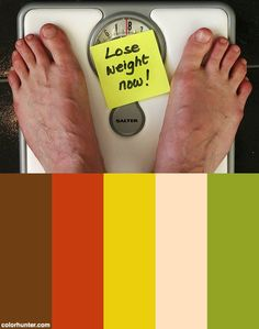 Lose Weight Now Color Scheme