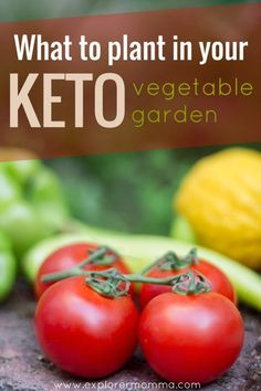 Are you dreaming of Spring gardening? If you're on a keto low carb gluten-free diet, here's what you should you plant to use your garden space most effectively. #keto #ketogenic #gardening #gardeningtips  #vegetablegarden