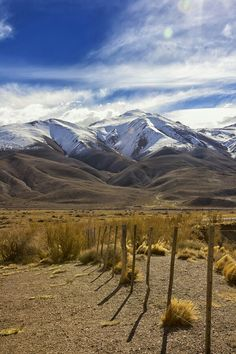 Andes argentinos