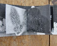 Original botanical art monoprint artist book Keepsake by Stef Mitchell. Flowers and ferns Abstract print Unique floral nature gift Soft pink Monoprint Artists, Printmaking, Nature Prints, Art Prints, Mixed Media Scrapbooking, Book Markers, Galleries In London, Cyanotype, John Muir
