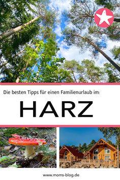 Alles, was ihr über einen Familienurlaub im Harz wissen müsst! #harz #urlaubindeutschland #familienurlaub #reiseblog Splash Pad, Traveling With Children, Vacation Places