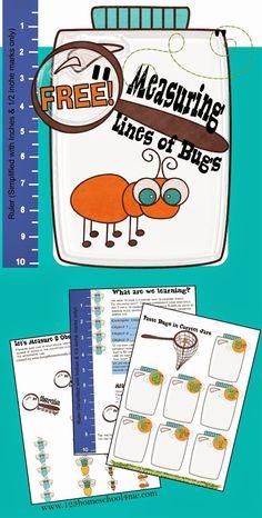 FREE Measuring Bugs