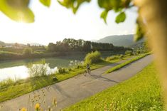 Urlaub mit dem Fahrrad: Genuss am Drauradweg - The Chill Report Bungee Jumping, Geocaching, Golf Courses, Country Roads, Outdoor, Kaprun, Outdoors, Outdoor Games, The Great Outdoors