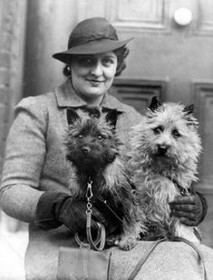 Miss J. P. King with the Hon. Mary Hawkes Cairn Terriers Lockyers Shadow and Lockyers Sunshine. Crufts Dog Show, First Day 09/02/38 At the Royal Agricultural Hall, Isllington, N.
