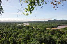 Impressive view, Amazing feeling - Bolivian Amazon Jungle --- Photo taken by Esmeralda Spiteri