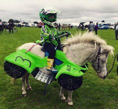 Horse and Rider Costume - horse ATV 4-wheeler