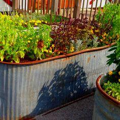 Awesome idea for a garden box!
