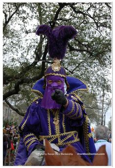 Mardi Gras Wants You Photo  Mardi Gras by theRDBcollection on Etsy