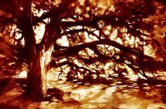 Title:  Oak   Artist:  Scott Norris   Medium:  Digital Art - Digital Painting
