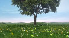 MBNA - 'Seasons'