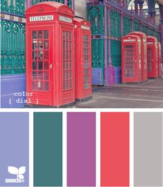 Color Dial: Periwinkle Purple, Deep Turquoise Teal, Vibrant Violet, Coral Red and Cement Gray