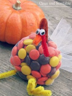 Such a cute idea for a Thanksgiving Treat! DIY Tulle Turkey!