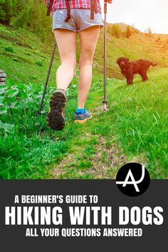 Hiking with Dogs -Hiking Tips For Beginners – Backpacking Tips and Tricks for Women and Men via @theadventurejunkies