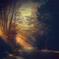 Shadowlands by nina-Y