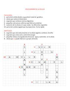 crucigrama de la celula para cuarto de primaria