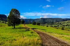 The road less travelled, Lost World Valley, Scenic Rim, Queensland