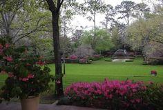 River Oaks Garden Club's Azalea Trail