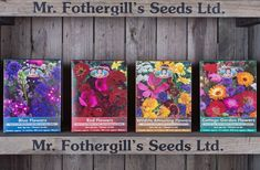 Mr. Fothergill's annual seed mixes - perfect for beginners and colour coded! #gardening