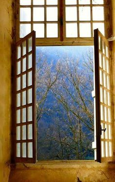 526 Best View Through A Window Images Windows Painted Canvas