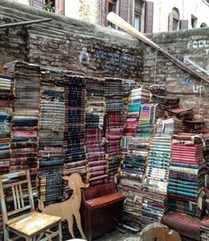 Bibliophile's Dream: 13 of the World's Most Beautiful Bookstores