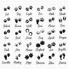 Footprints Silhouettes Svg paws animals Dxf Png Eps files vector paw animal clipart footprint cat dog pet animal pawprints design cut file Purchasing this listing you will get: 1 SVG File 1 DXF File 1 EPS File 30 PNG File Finger Tattoos, Body Art Tattoos, Tattoo Drawings, Tattoo Names, Tattoo Set, Henne Tattoo, Footprint Tattoo, Petit Tattoo, Necklace Tattoo