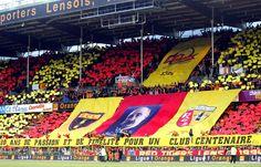 Supporter Racing Club de Lens. Rc Lens, Club, Basketball Court, Racing, Football, Sports, Centenarian, Angel, Hs Sports