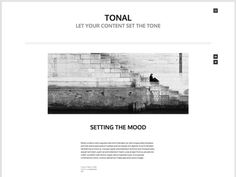 tonal WordPress theme